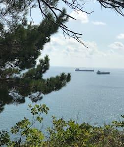 Апартаменты с лоджией на побережье Черного моря.