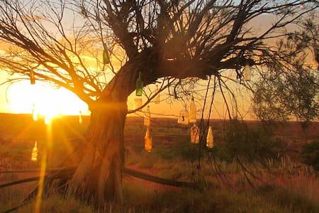 Outback Homestead Room