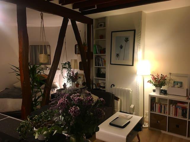 Chaleureux studio à Montmartre