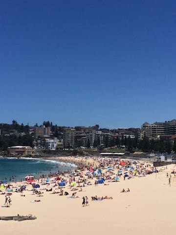Holidays Apartament 100 meters from Coogee Beach - Coogee - Appartement