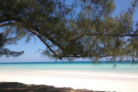 Tropical paradise awaits in Bahamas - Freeport