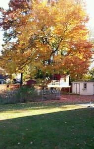 tree house in backyard - Schenectady