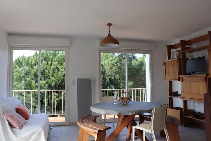 Appart duplex (4 pers) Cap Ferret centre