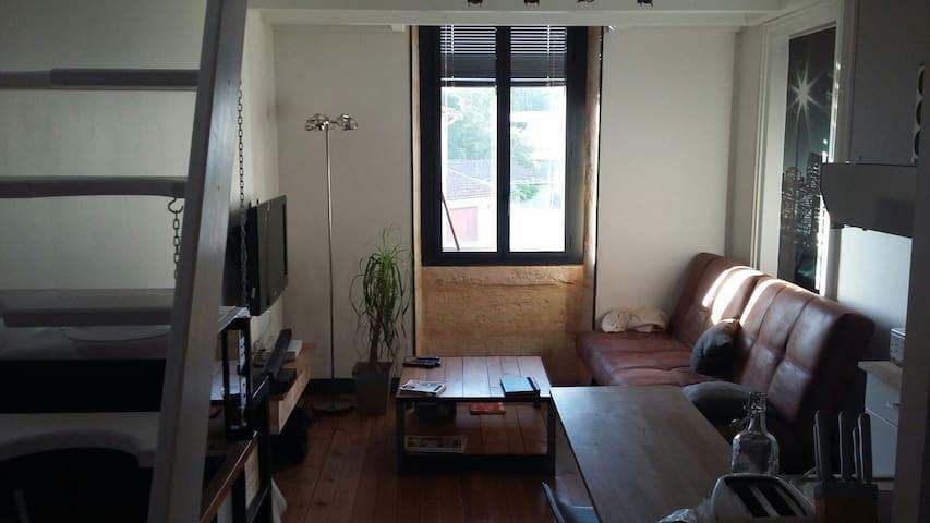 Bel appartement à gradignan centre