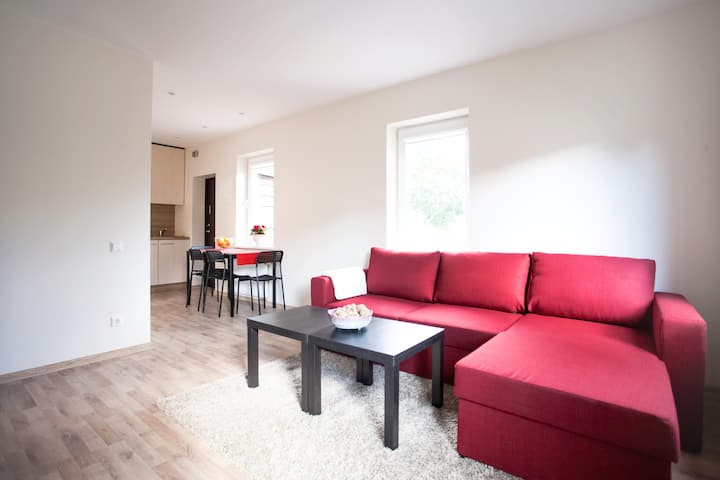 Cozy, comfortable apartment in Kaunas heart