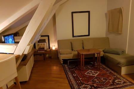 St.hanshaugen 2 rom loft leilighet - Oslo
