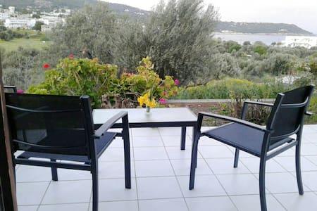 Lovely apartment very close to Agia Marina's beach