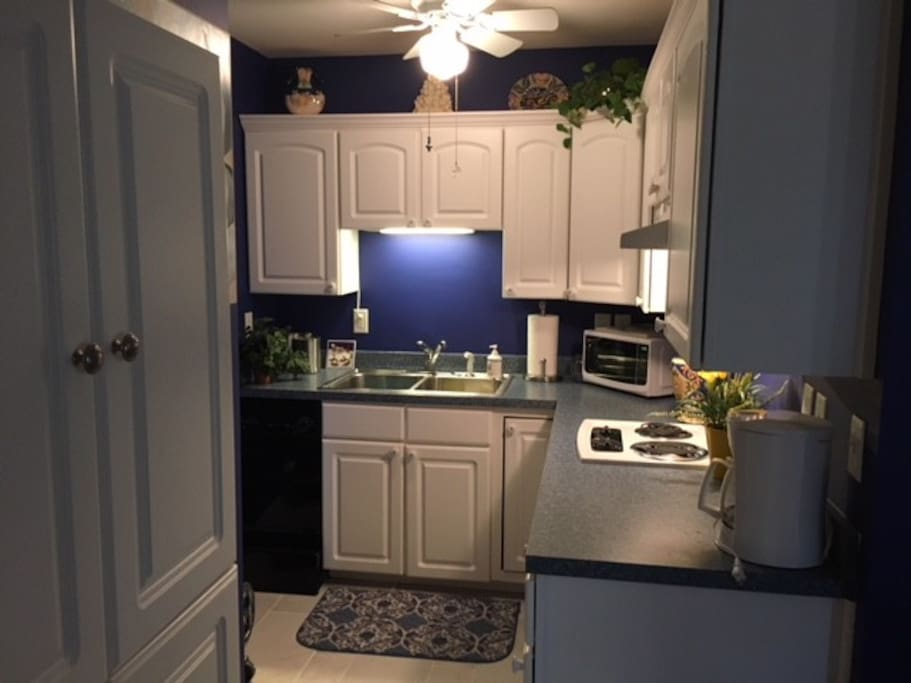 Kitchen w microwave and two-burner stove.   No oven but one can be made available if necessary.