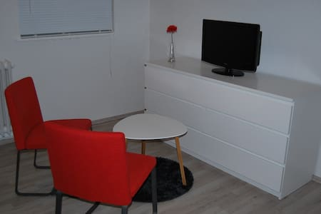 Bright studio with private entrance - Reykjavík
