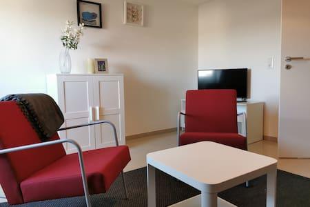 Wein, Rhein+Natur: neu renovierte 2 Zimmer-Wohnung