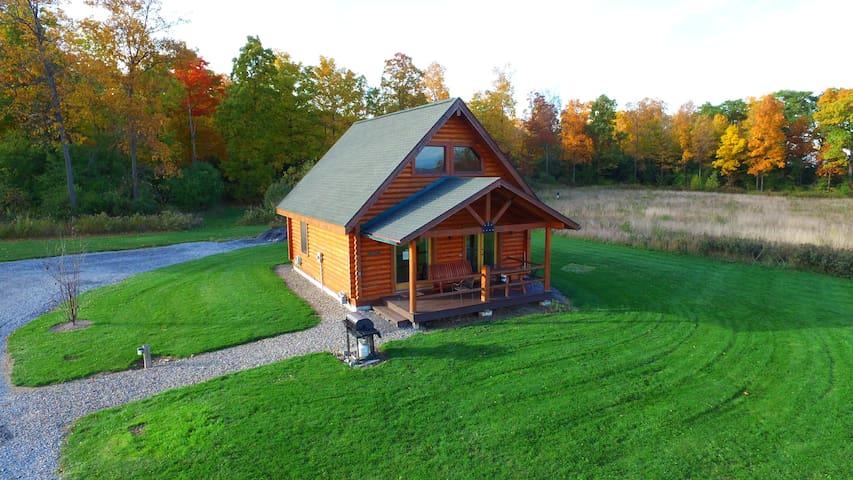 Hemlock Log Cabin overlooking Seneca Lake