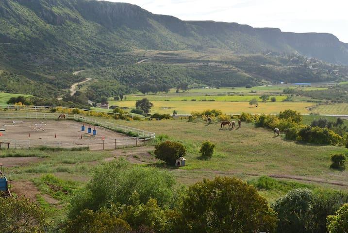 Rancho Lupita horse heaven getaway