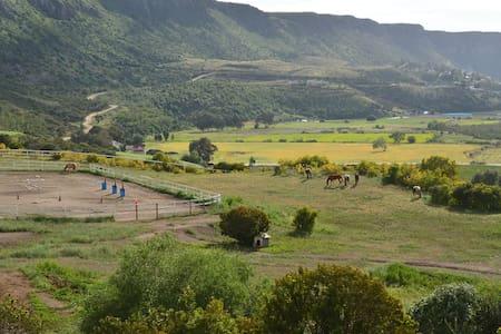 Rancho Lupita horse heaven getaway - La Mision - 独立屋