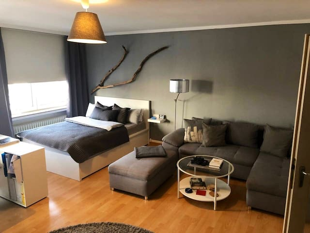 Central studio-appartment  near Maschsee Hanover