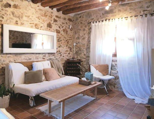 lounge with pullout sofa-salón con sofá cama
