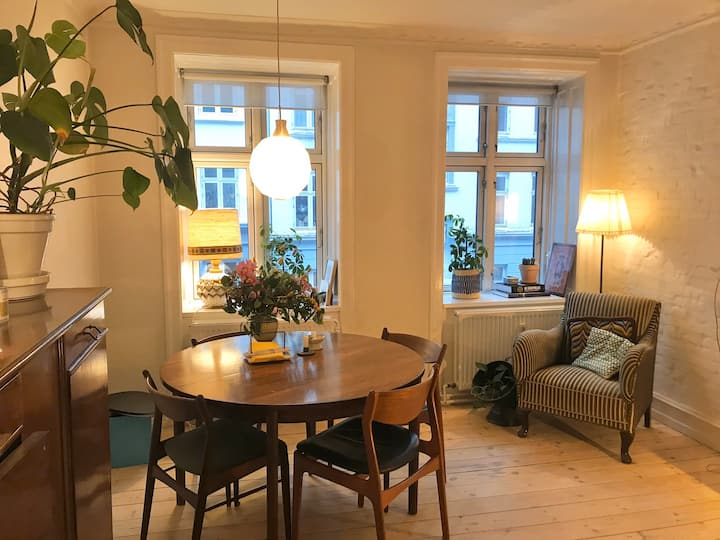 Cozy and lovely apartment in Copenhagen