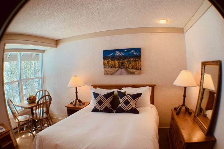 Two Blocks to Downtown Telluride! Budget Friendly - Pet Friendly - Community Hot Tub w/ Mnt Views