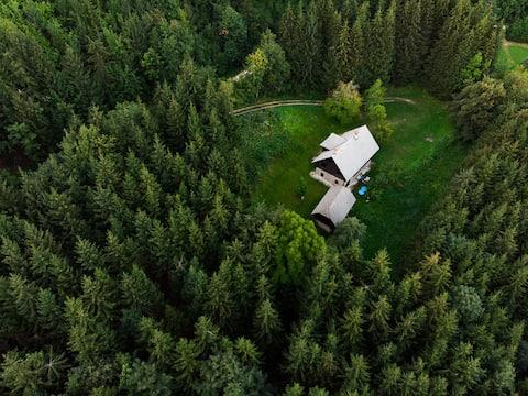 "Idyllic, family-friendly mountain cabin ""Seidl"""