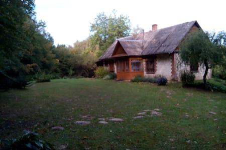 Domek letniskowy (holiday house with fireplace) - Wierzchoniów
