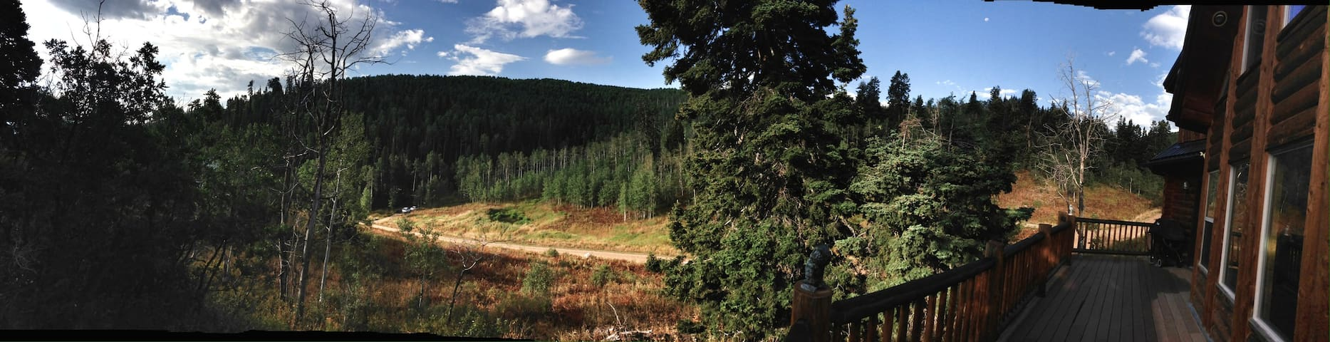 Large Cabin Located Near Park City - Coalville - Sommerhus/hytte