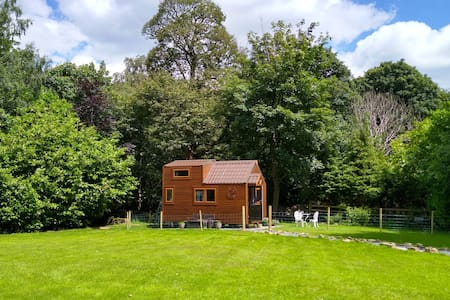 The Tiny House in the Woods