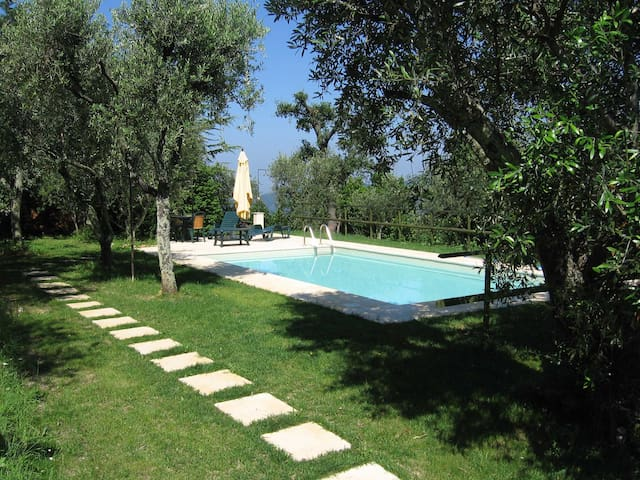 Albatrello, house with Swimmingpool - Camaiore - Dom