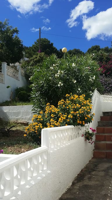 Lovely gardens with indigenous plants, trees and shrubs