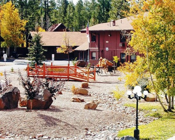 *Pinetop, AZ, 1 Bedroom #2 /0262 - Pinetop-Lakeside - Appartement