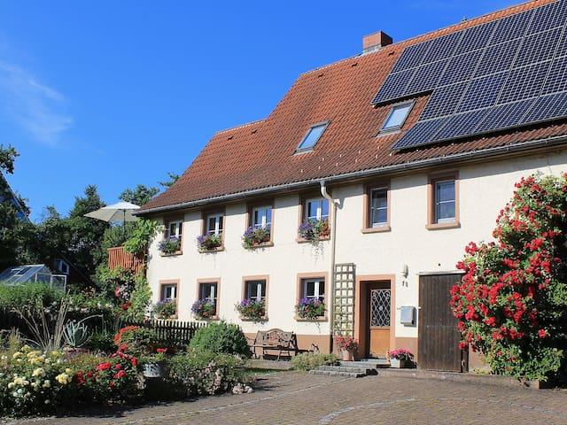 Apartment Ferienwohnung Rosa for 4 persons in Hüfingen