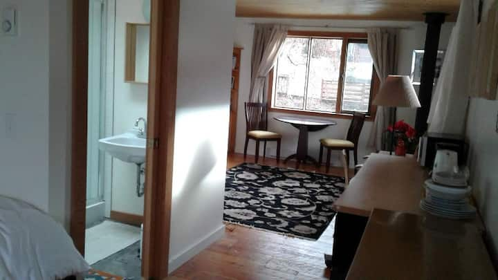 Beautiful Suite-Like Room Close to Downtown