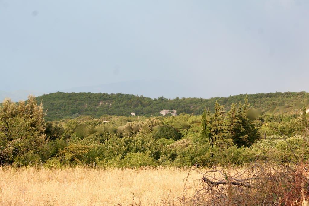 La propriété (ferme à droite et petite Lauze, à gauche) au bord de la réserve naturelle