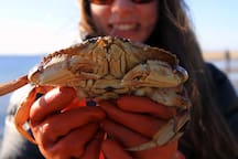 Crabbing on Tillamook Bay