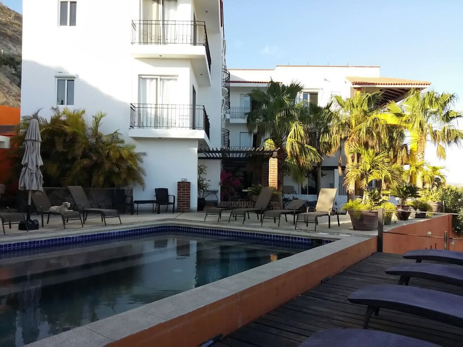 Ocean View 2 Bedroom Apartment Apartments For Rent In