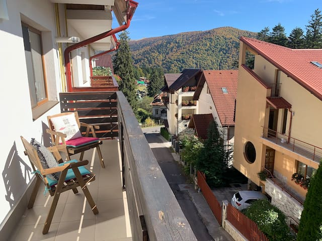 Studio Apartment ✵ 7 mins walk to Peles Castle