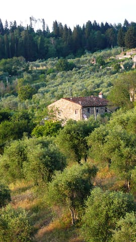 Old Farm House in the Florence hills (Fiesole)