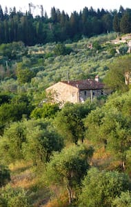 Fascinating Old Farm House in the Florence hills