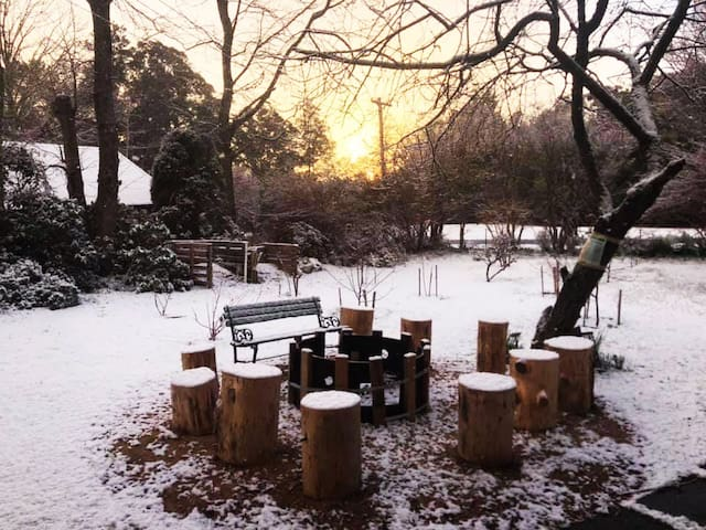 Firepit in the snow anyone?