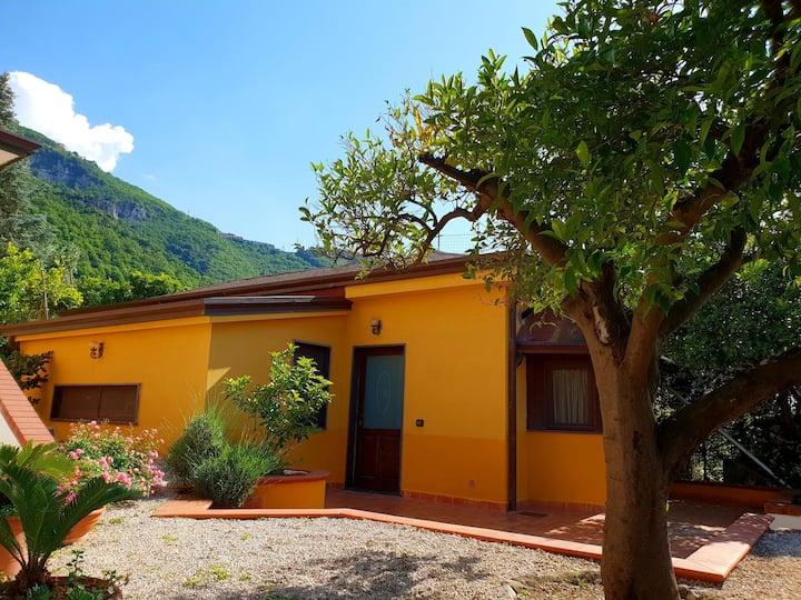 Chalet garden house