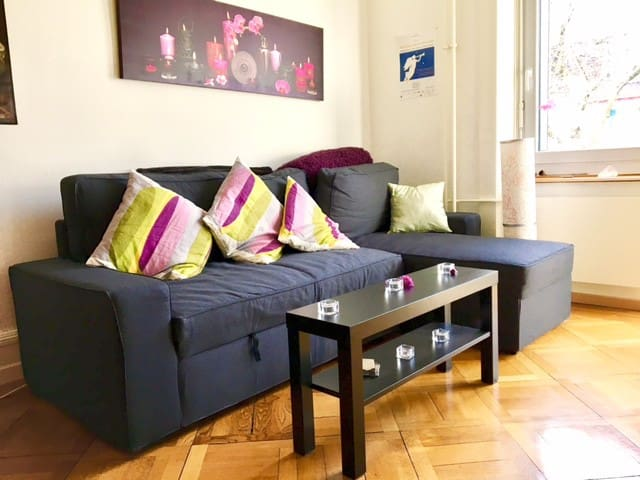 CHARMING 3-ROOM FLAT IN ZÜRICH CENTRE  - Zurych - Apartament