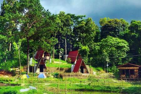 Na La Ri eco-resort in Sumer - near Shillong