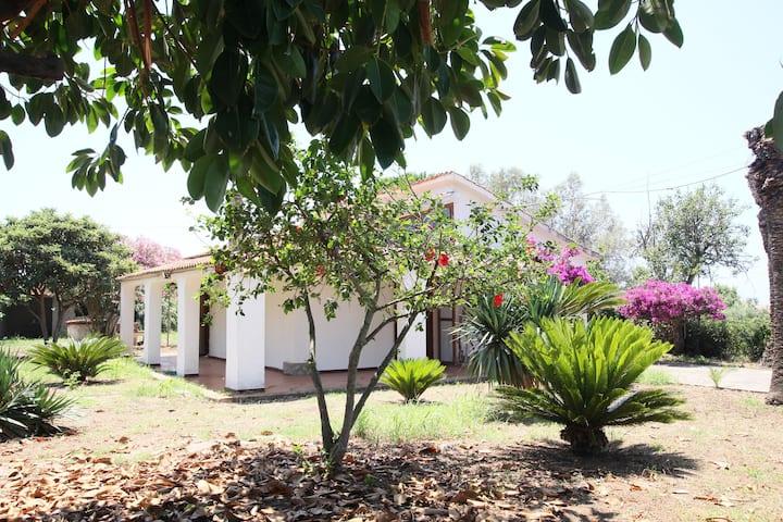 Villa Borgese al mare con giardino