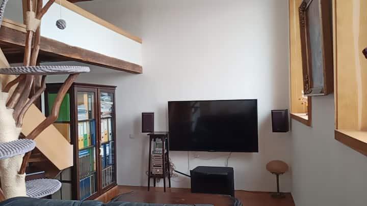 Atyp loftové bydlení v centru OV, 4NP bez výtahu
