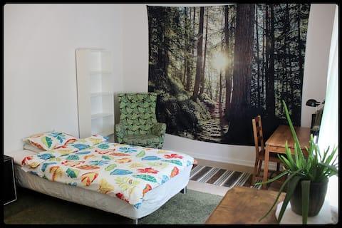 Spacious room, quiet area close to city centre