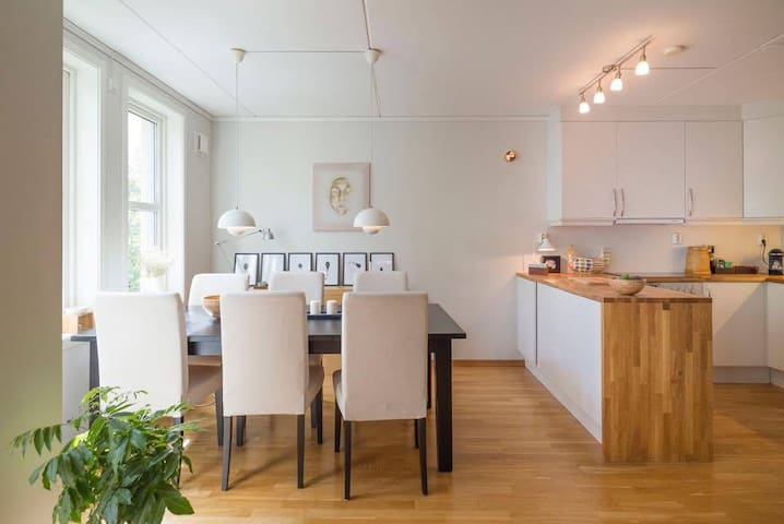 Modern and spacious apartment in Vika, Oslo