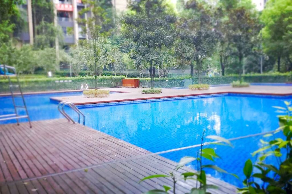 游泳池 swimming pool