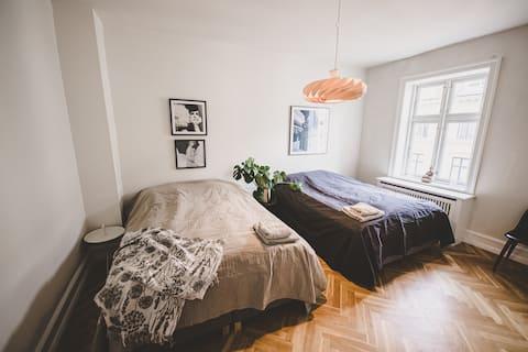 Grand Designer Apartment in Central Copenhagen