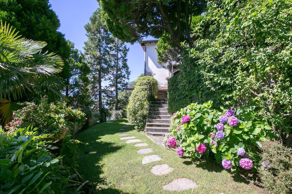 Entrance and garden of the villa