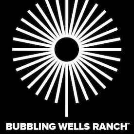 Bubbling Wells's profile photo
