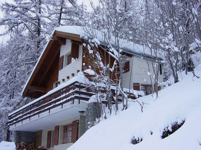 Comfortable  Chalet in Loetschental valley - Wiler (Lötschen) - House