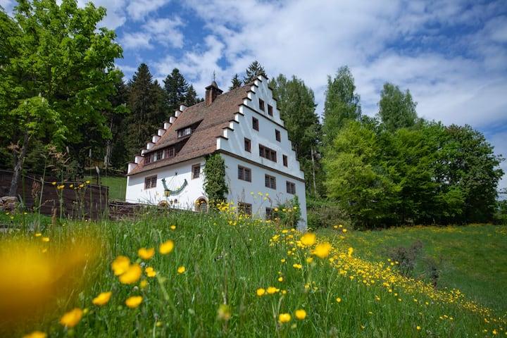 Herrschaftliches Herrenhaus Hofgut Bärenschlössle 2 - 3500 m2 Grundstück - BBQ, Wlan, Historisch, top ausgestattet